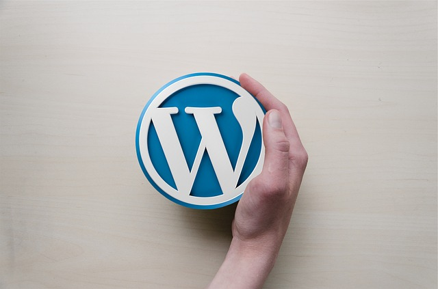 seguridad internet wordpress