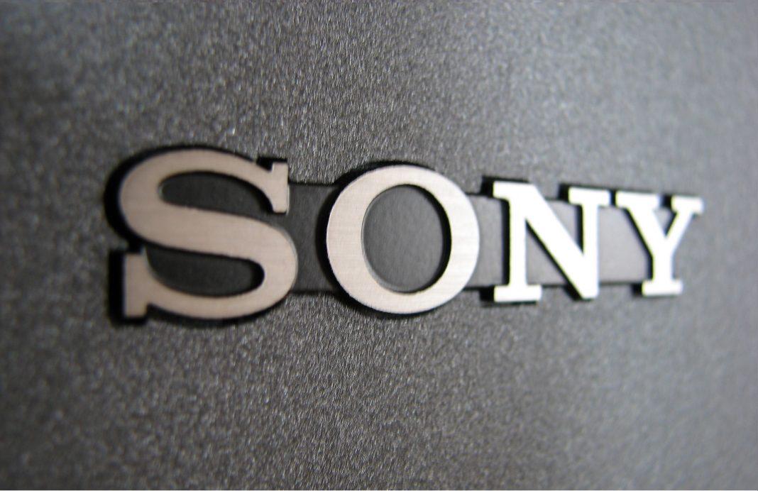 Sony fdrx3000r