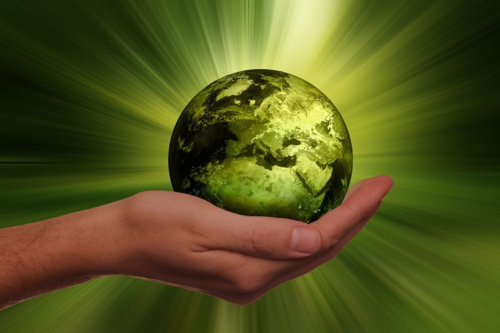 energia-renovable-proveedor